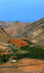 Das Reiseziel Fuerteventura